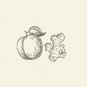 albicocca-zenzero